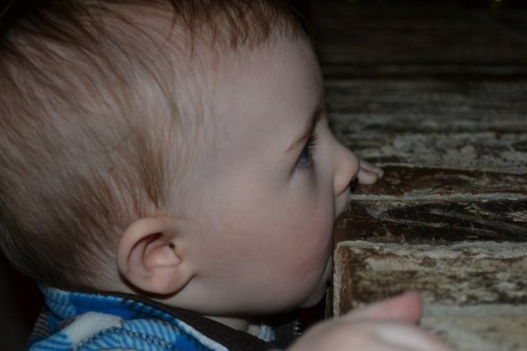 tasting bricks