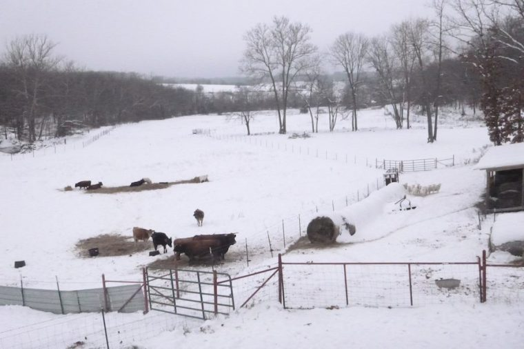 Seriously, nothing says Christmas like snow, SNow, SNOW!!!