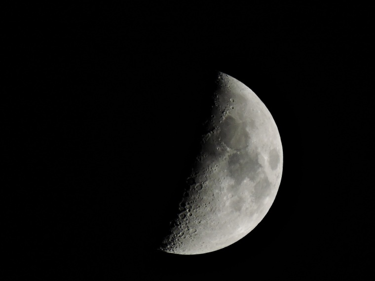 Danny really loves taking photos of the moon...who can blame him? Good Night Moon.