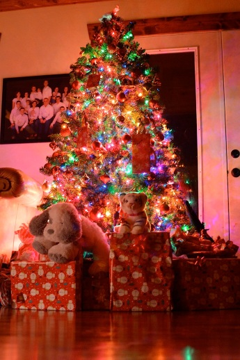 There were ZERO gifts under the tree at bedtime.