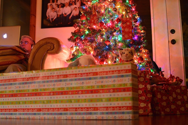 POOF - in the middle the night, the pile of presents begins to grow!