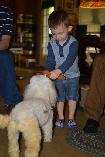 Wiley playing with Dolly!