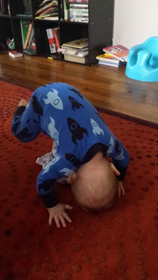Eight months and already a pro at downward facing dog.
